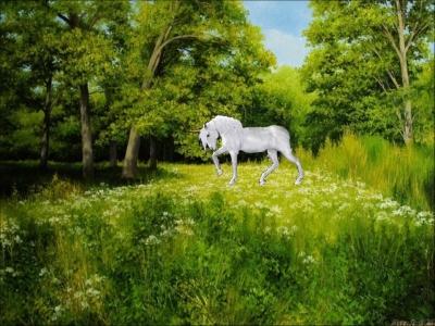 Сказочный лес | Летний день в сказочном лесу
