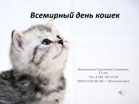 Как поздравить любимую кошку | Всемирный день кошек