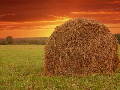 Природа Урала | На закате