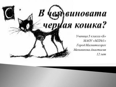 В чем виновата черная кошка