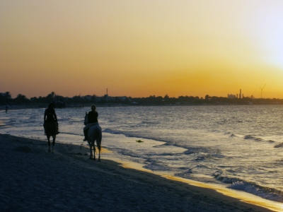 Пейзаж | Тунис