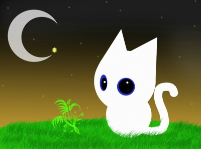 Мои увлечения | Кот