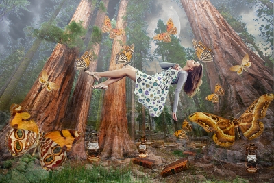 Мои увлечения | Волшебный мир книг и бабочек