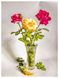 Натюрморт «Розы»