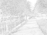 Городские скверы и парки