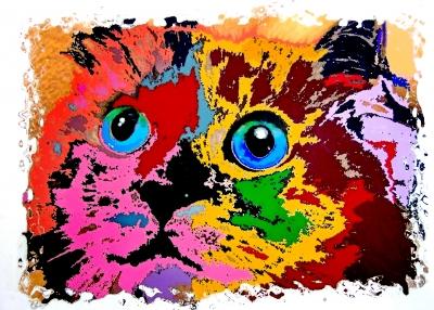 Растительный и животный мир | Кот