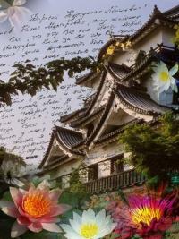 Моя семья письмо из Японии
