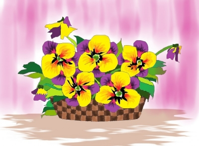 Любимые цветы | Анютины глазки